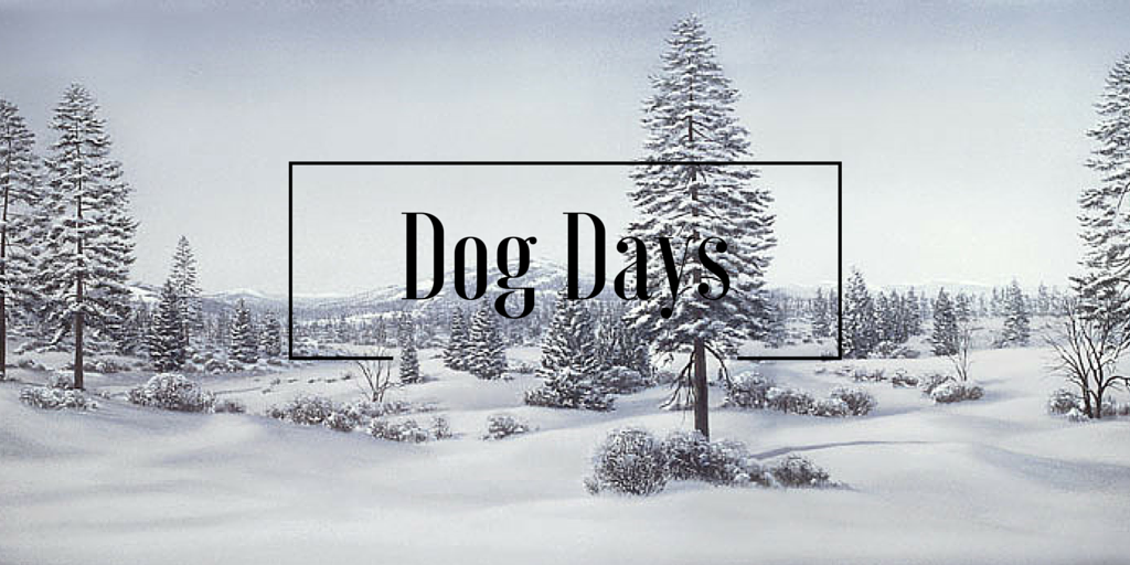 The Dog Days of Winter 1