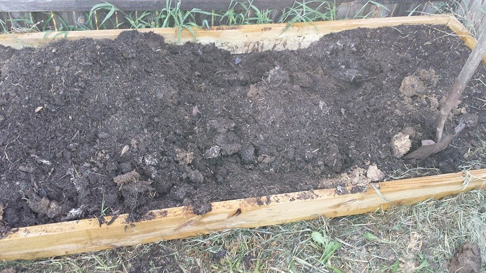 raised bed turned over