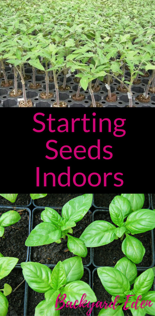 Starting Seeds indoors, seed starting, starting seeds, Backyard Eden, www.backyard-eden.com, www.backyard-eden.com/starting-seeds-indoors
