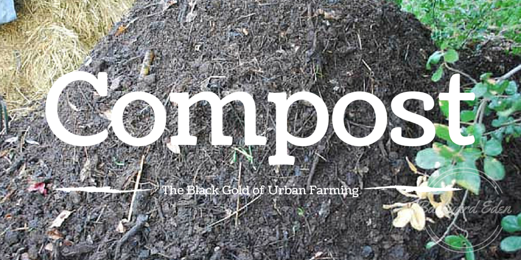 Compost, Black Gold for the garden, how to