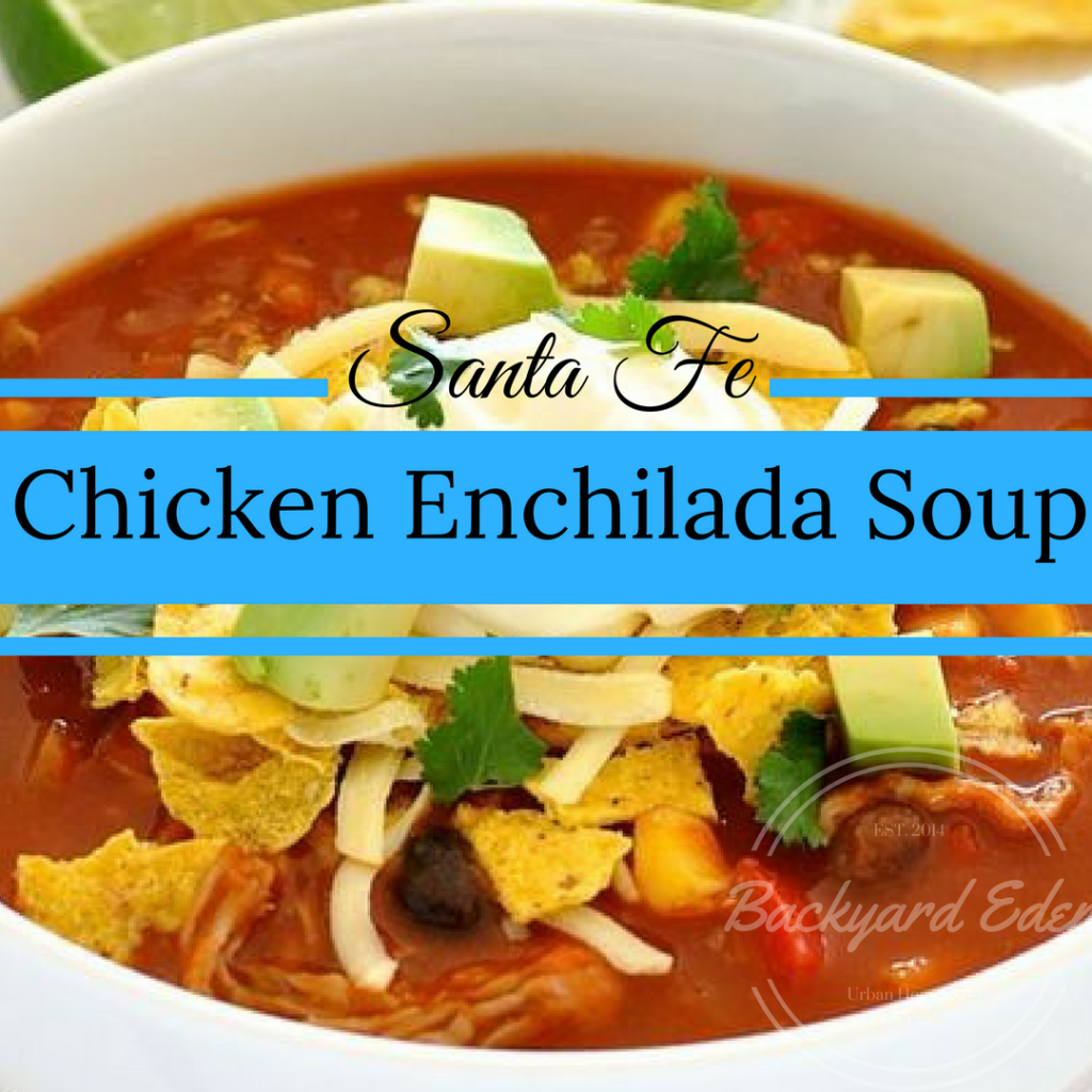 Recipes, Slow Cooker Recipes, Crock Pot Recipes, Chicken Enchilada Soup, Backyard Eden, www.backyard-eden.com