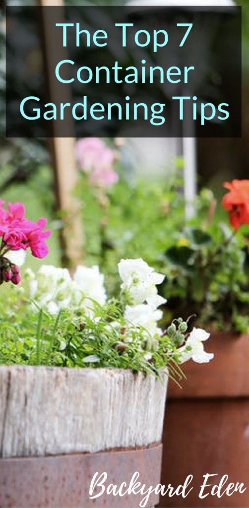 The Top 7 Container Gardening Tips, Container Gardening Tips, Container Gardening, Backyard Eden, www.backyard-eden.com