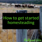 How to get started Homesteading today 1