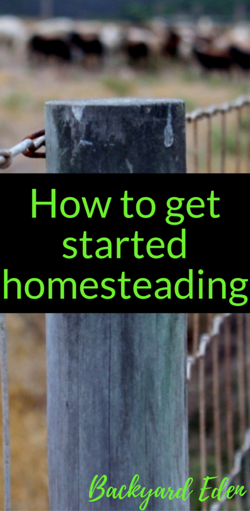 How to get started homesteading, homesteading, Backyard Eden, www.backyard-eden.com, www.backyard-eden.com/get-started-homesteading-today