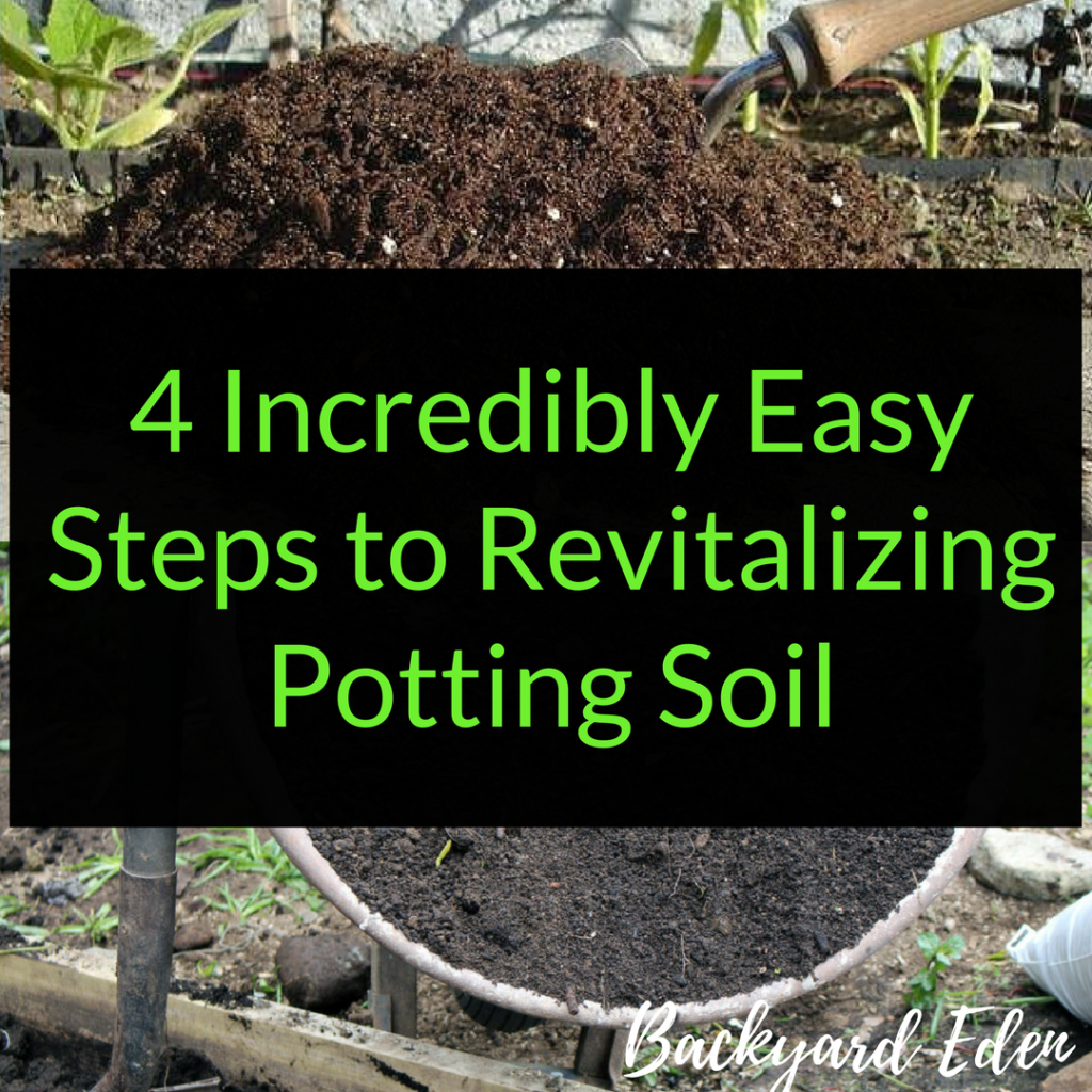 4 Incredibly Easy Steps to revitalizing potting soil, re-use potting soil, Backyard Eden, www.backyard-eden.com, www.backyard-eden.com/revitalizing-potting-soil