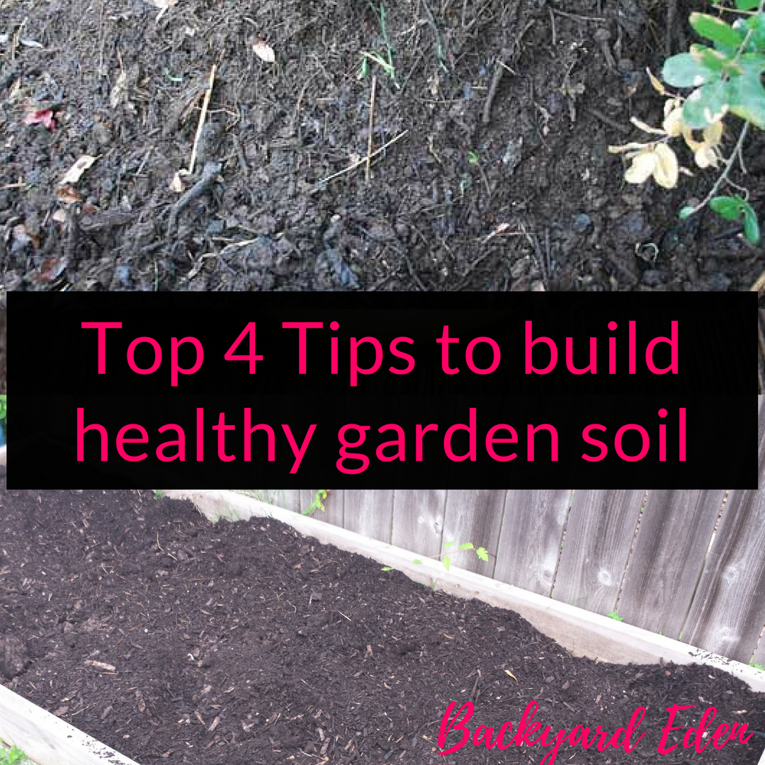 Top 4 Tips to build healthy garden soil, build healthy soil, soil, Backyard Eden, www.backyard-eden.com, www.backyard-eden.com/top-4-tips-to-build-healthy-garden-soil