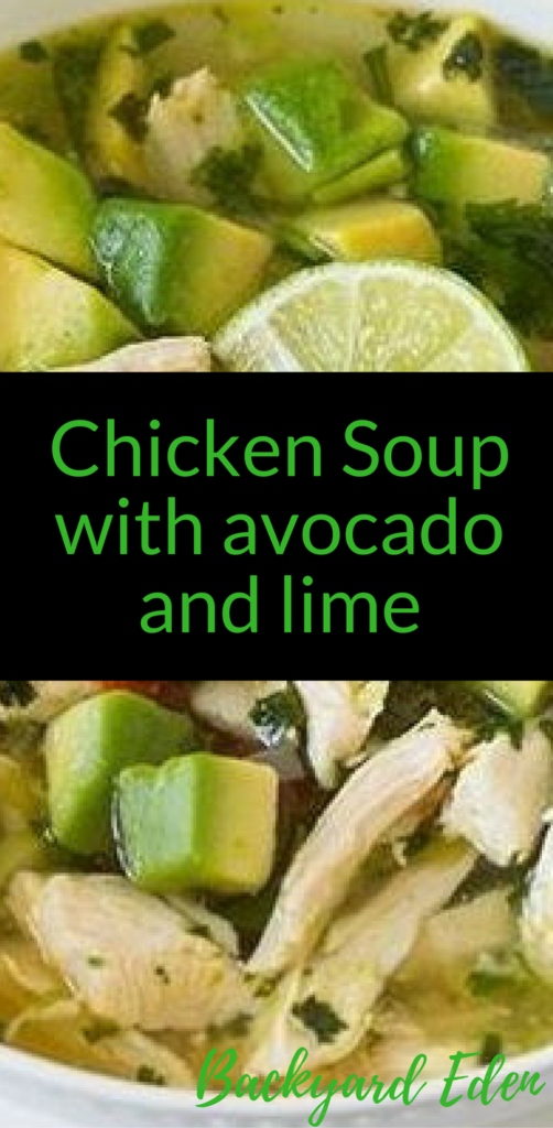 Chicken Soup with avocado and lime, chicken soup recipe, Backyard Eden, www.backyard-eden.com, www.backyard-eden.com/chicken-soup-with-avocado-and-lime