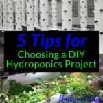 5 Tips for choosing a diy hydroponics project, DIY hydroponics, Backyard Eden, www.backyard-eden.com, www.backyard-eden.com/5-tips-for-choosing-a-diy-hydroponics-project