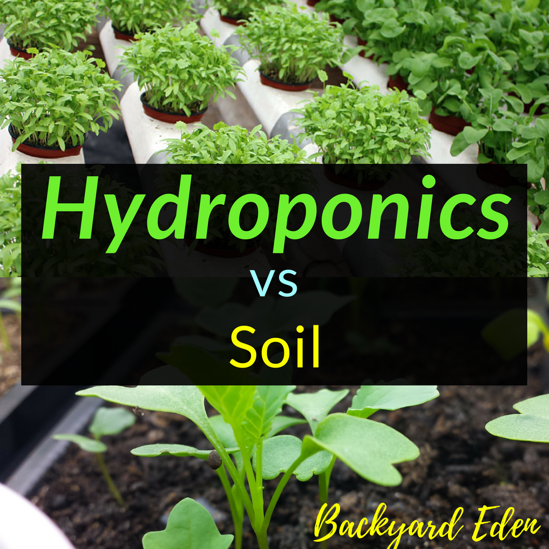 Hydroponics vs soil backyard eden for Topsoil vs potting soil