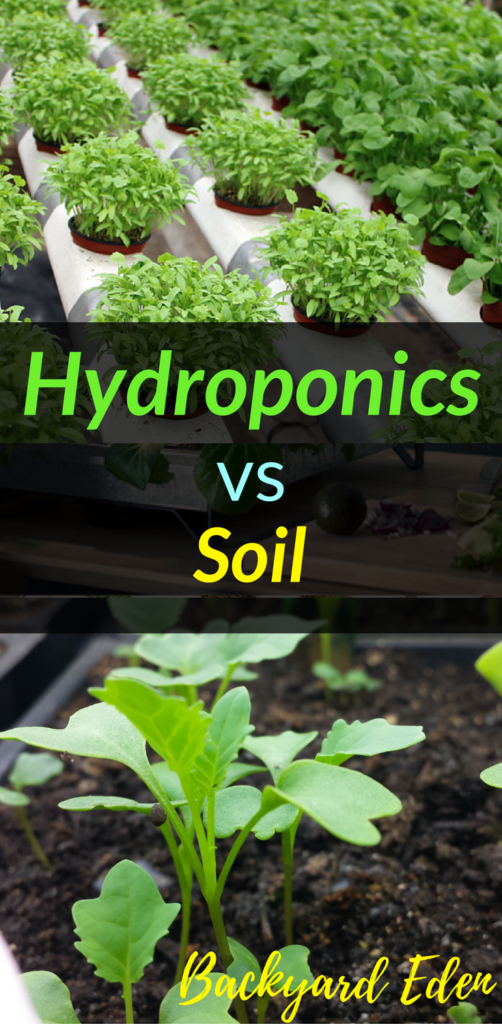 Hydroponics vs soil, Hydroponics, Backyard Eden, www.backyard-eden.com, www.backyard-eden.com/hydroponics-vs-soil