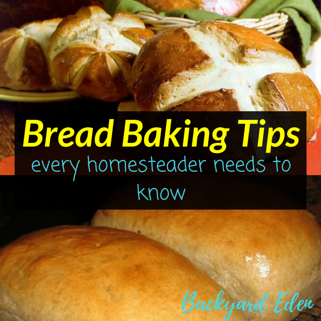 Bread Baking Tips - every homesteader needs to know, bread baking tips, baking tips, Backyard Eden, www.backyard-eden.com, www.backyard-eden.com/bread-baking-tips-every-homesteader-needs-to-know