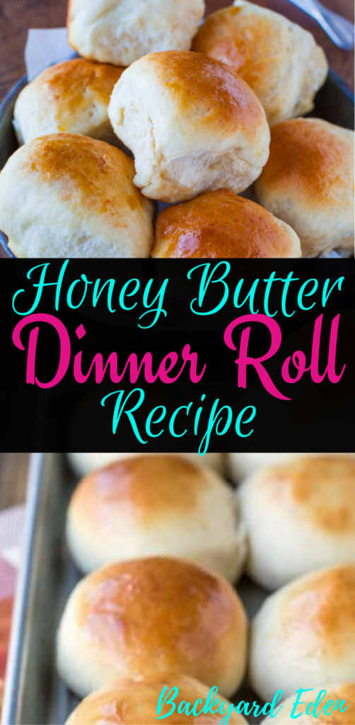 Honey Butter Dinner Roll Recipe, Dinner Roll, Homemade Dinner Roll, Honey Butter Rolls, Backyard Eden, www.backyard-eden.com, www.backyard-eden.com/honey-butter-dinner-roll-recipe