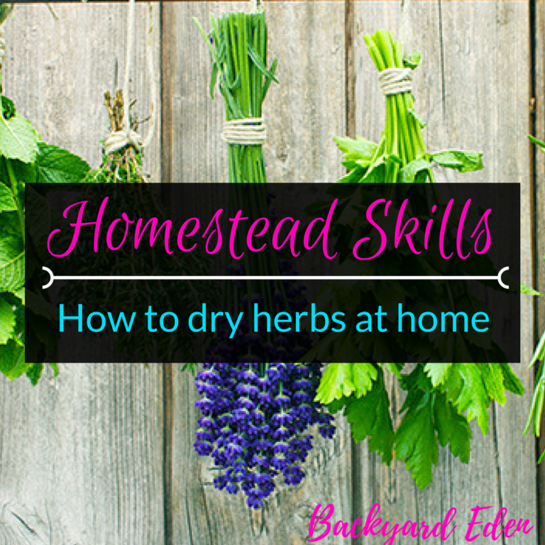 How to dry herbs at home, how to dry herbs, homestead skills, Backyard Eden, www.backyard-eden.com, www.backyard-eden.com/how-to-dry-herbs-at-home