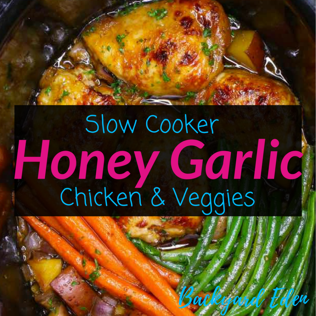 Slow Cooker Honey Garlic Chicken and Veggies 1