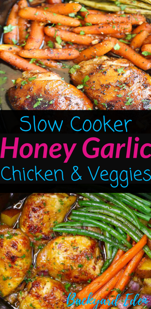 Slow Cooker Honey Garlic Chicken & Veggies, Slow Cooker, Crockpot, Chicken Recipe, Backyard Eden, www.backyard-eden.com, www.backyard-eden.com/slow-cooker-honey-garlic-chicken-and-veggies