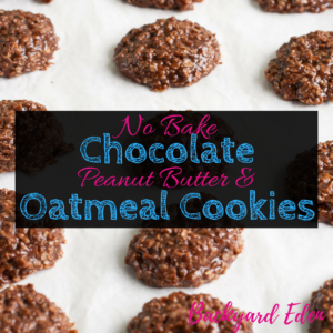 No Bake Chocolate Peanut Butter and Oatmeal cookies, no bake, chocolate oatmeal cookies, cookies, Backyard Eden, www.backyard-eden.com, www.backyard-eden.com/no-bake-chocolate-peanut-butter-and-oatmeal-cookies