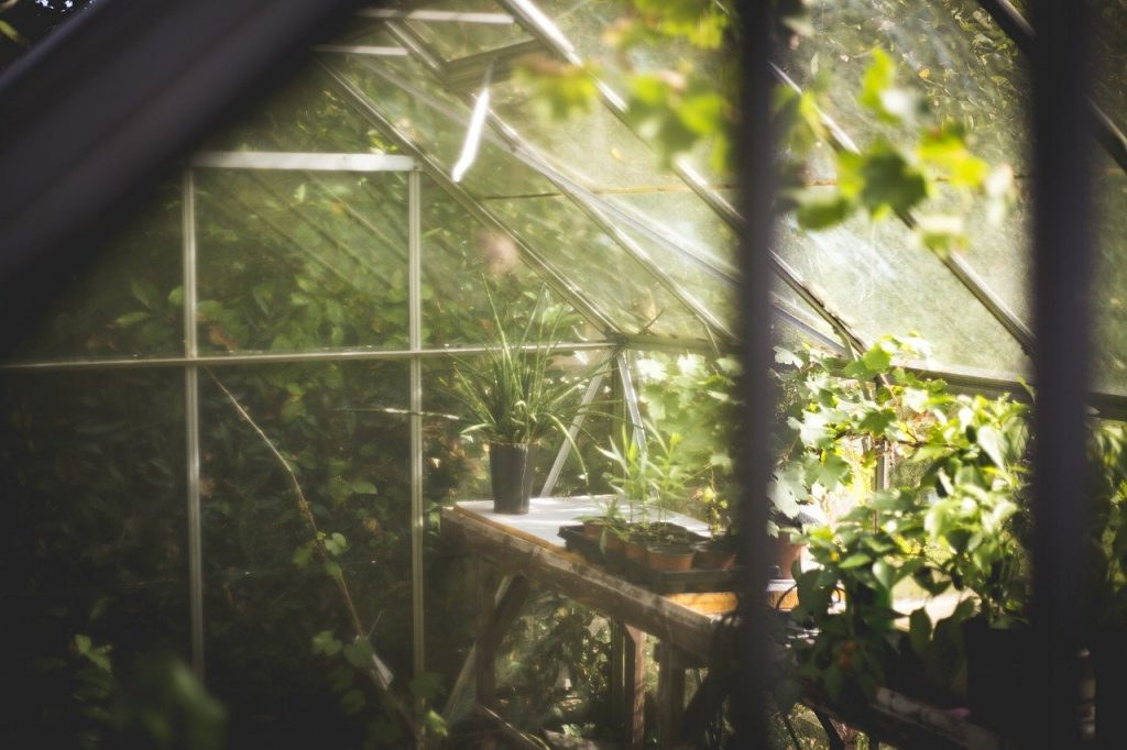 how to heat a greenhouse using thermal mass, how to heat a greenhouse, Backyard Eden