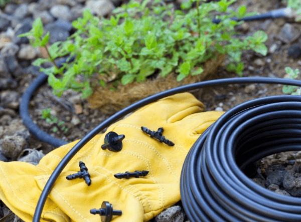 Drip Irrigation Systems: The Ultimate Guide 1
