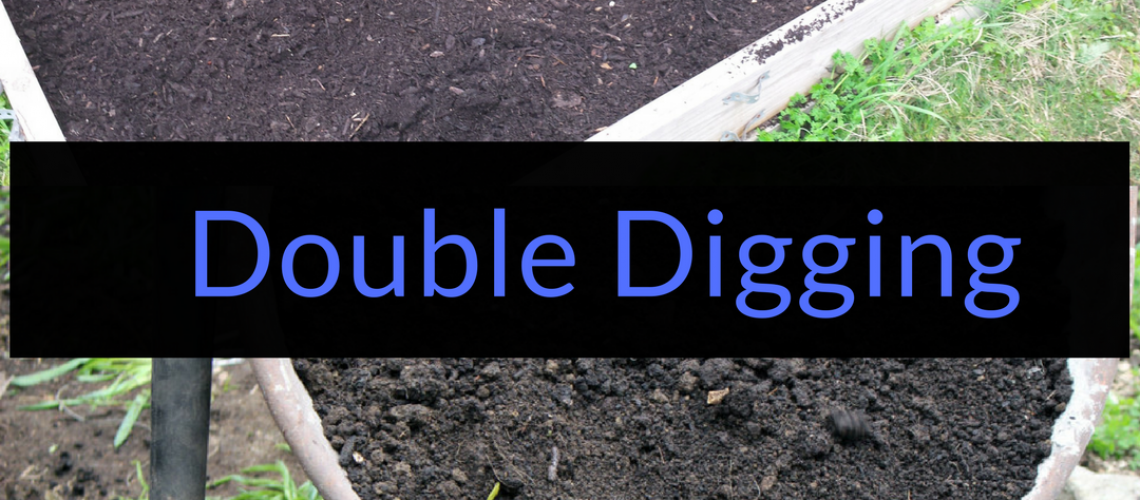 Double Digging, How to double dig your beds, Backyard Eden, www.backyard-eden.com