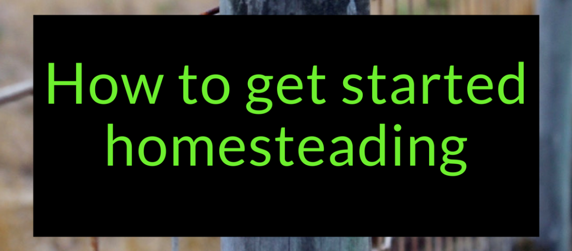 How to get started homesteading today 2