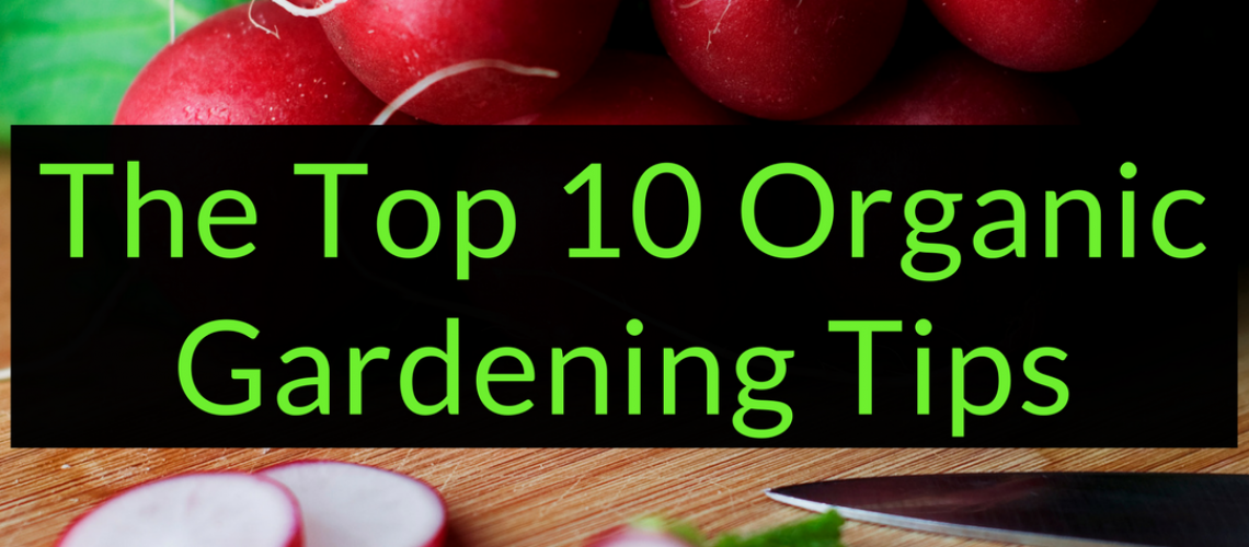 The Top 10 Organic Gardening Tips, Organic Gardening Tips, Backyard Eden, www.backyard-eden.com, www.backyard-eden.com/top-10-organic-gardening-tips